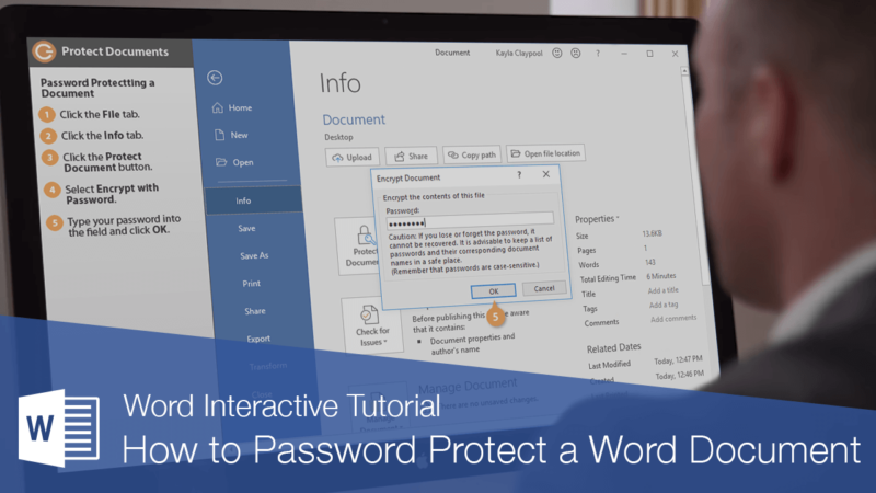 How to Protect a word document with a password